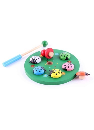 Learning Toys Eğitsel Oyuncaklar Renkli